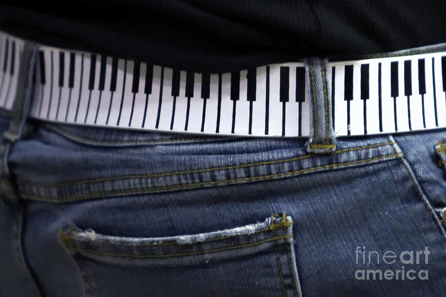 Acoustic Photograph - A Belt Of Cords by Alan Look