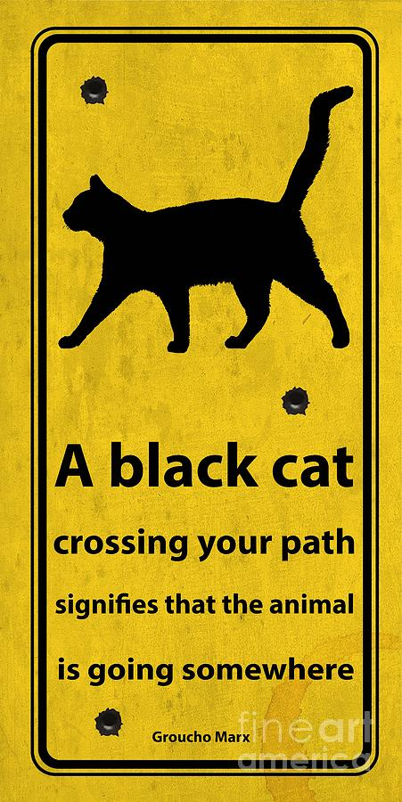A Black Cat Funny Road Quote And Shoot Digital Art By Drawspots