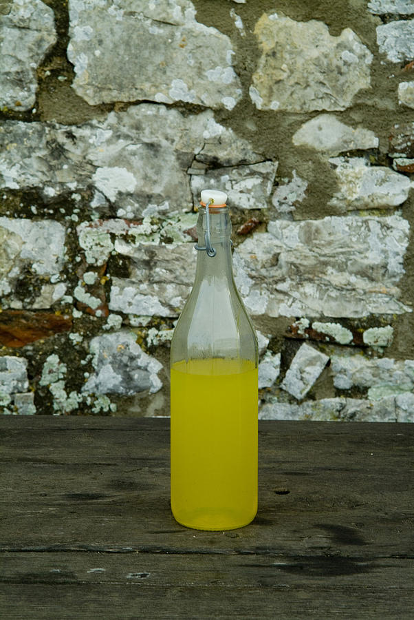 Limoncello Photograph - A Bottle Of Limoncello Sits On A Picnic by Todd Gipstein