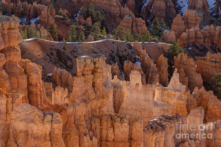 A Bryce Moment Photograph