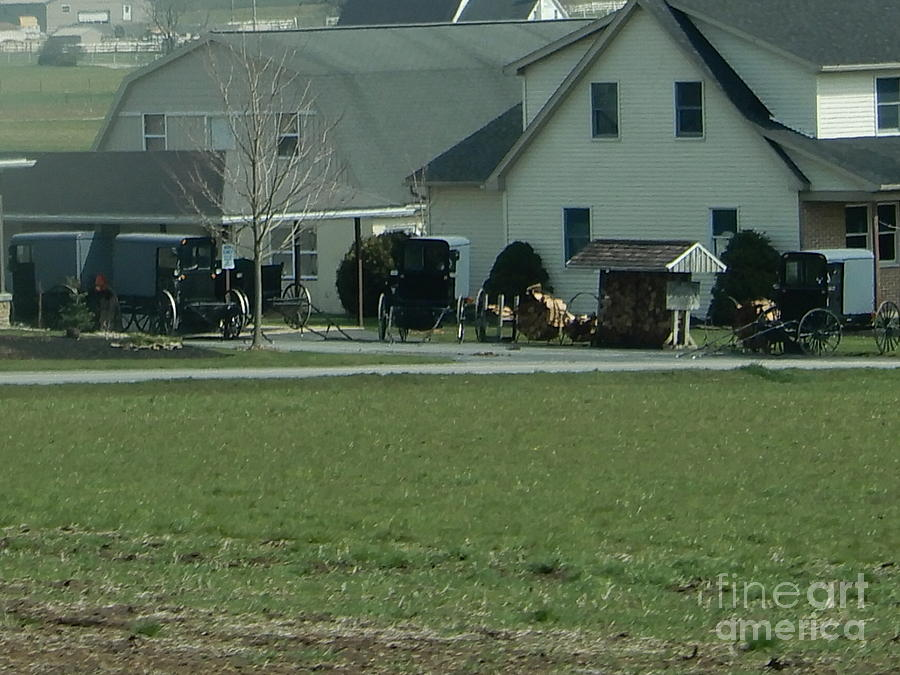Amish Photograph - A Bunch Of Buggies On A Visiting Sunday by Christine Clark