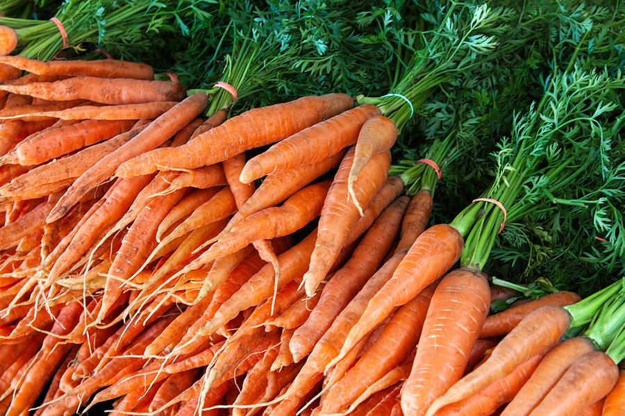 Carrot Photograph - A Bunch Of Carrots by Todd Klassy