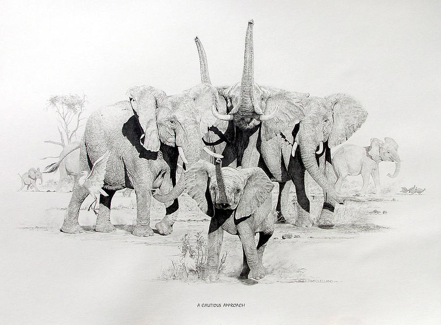 Elephant Painting - A Cautious Approach by Chris McClelland