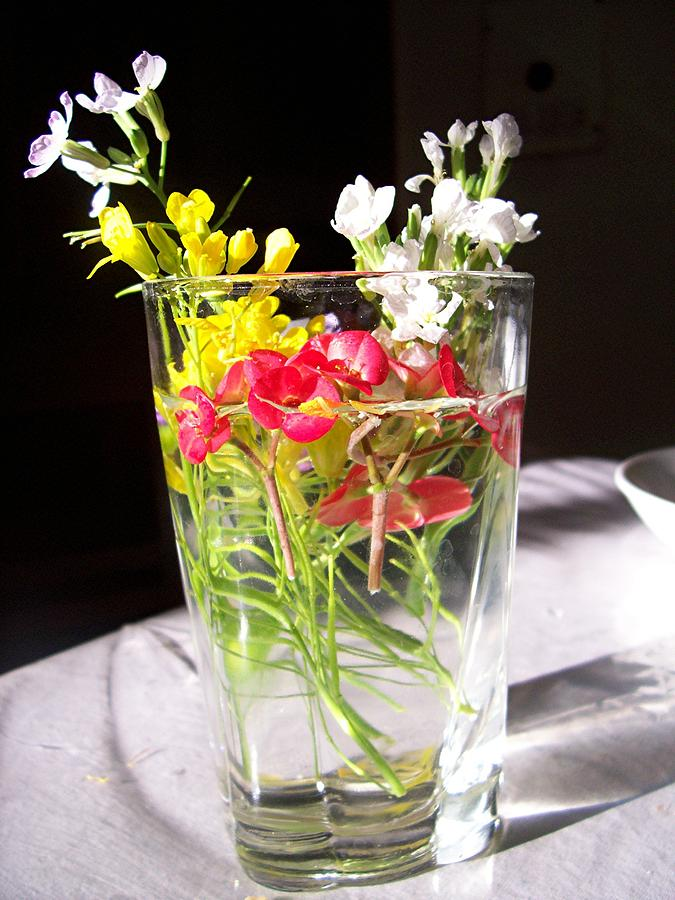 Flower Photograph - A Childs Offering by Caroline  Urbania Naeem