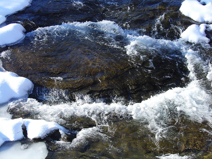 Winter Photograph - A Chilly Froth Circles A Resting Stone by Terrance DePietro