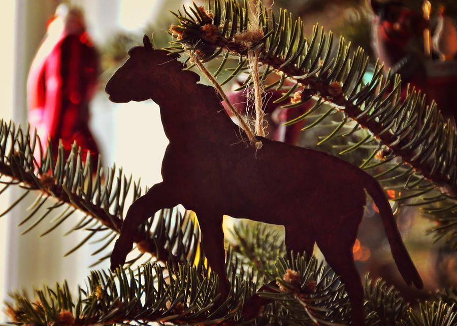Horse Photograph - A Christmas Trot by JAMART Photography