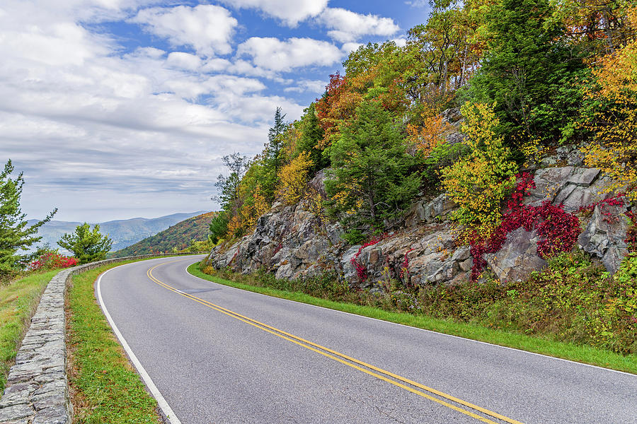 A Colorful Curve on Skyline Drive by Lori Coleman