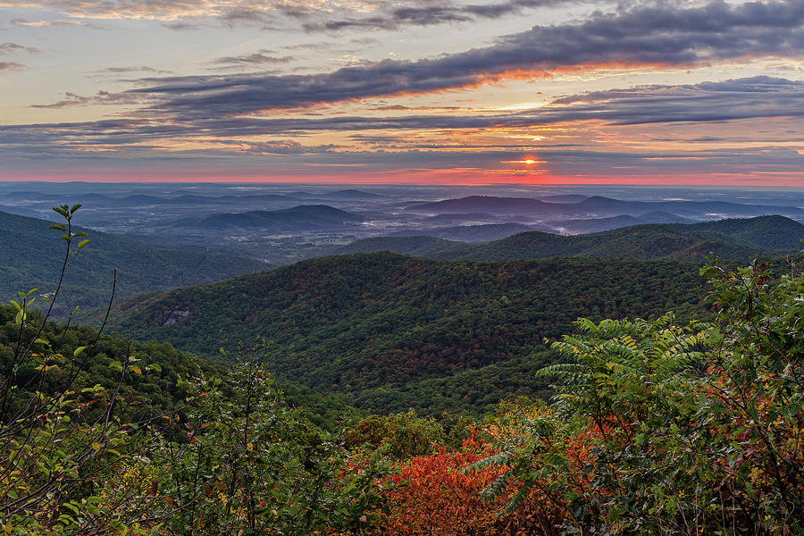 A Colorful Sunrise by Lori Coleman