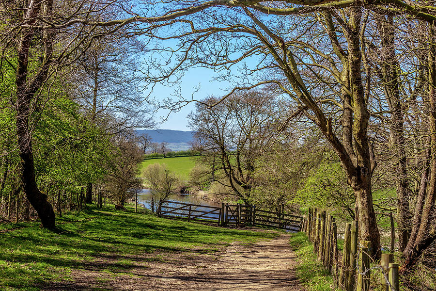 Agriculture Photograph - A Country Pathway In Northern England by W Chris Fooshee