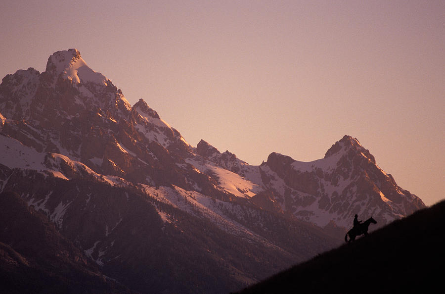 Cowboy Photograph - A Cowboy Horseback Riding Silhouetted by Richard Nowitz