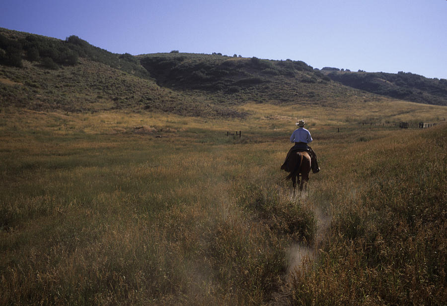 Steamboat Photograph - A Cowboy Looks For His Herd by Taylor S. Kennedy