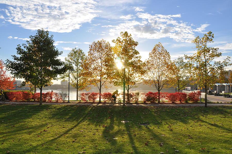 Fall Photograph - A Crisp Fall Morning by Caroline Reyes-Loughrey
