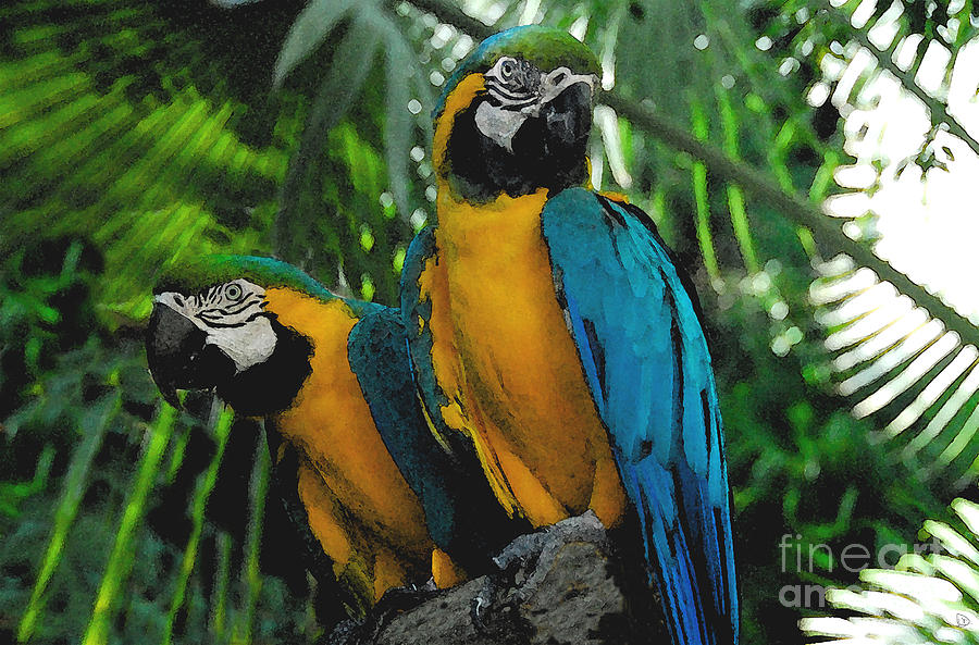 Tropical Painting - A Curious Pair by David Lee Thompson
