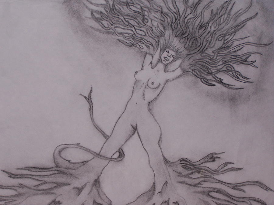 Abstract Drawing - A Dance With The Wind by Erin Hope