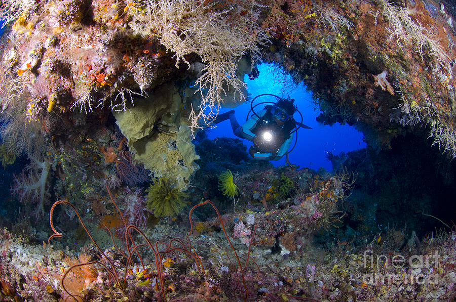 Arch Photograph - A Diver Peers Through A Coral Encrusted by Steve Jones