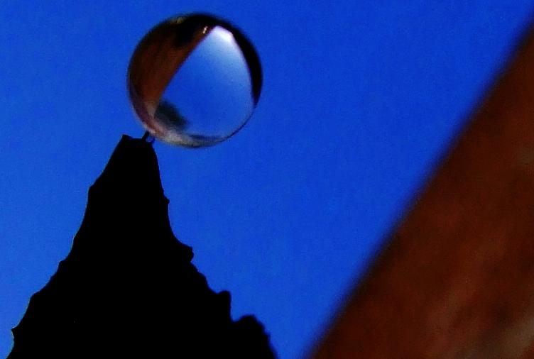 Waterdrops Photograph - A Drop Is Born by Bill Vernon