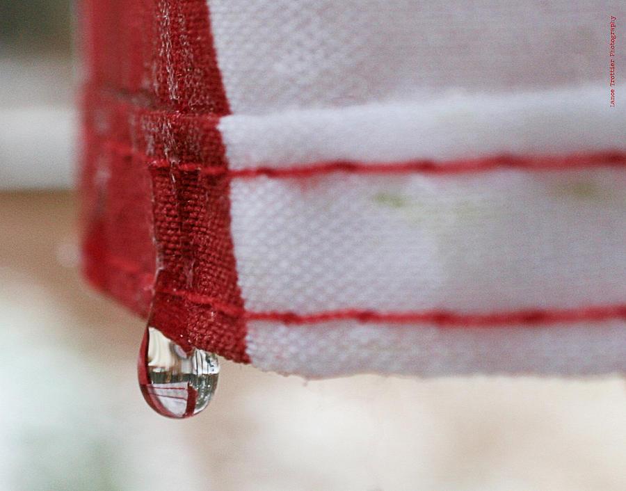 A Drop Of Patriotism II Photograph