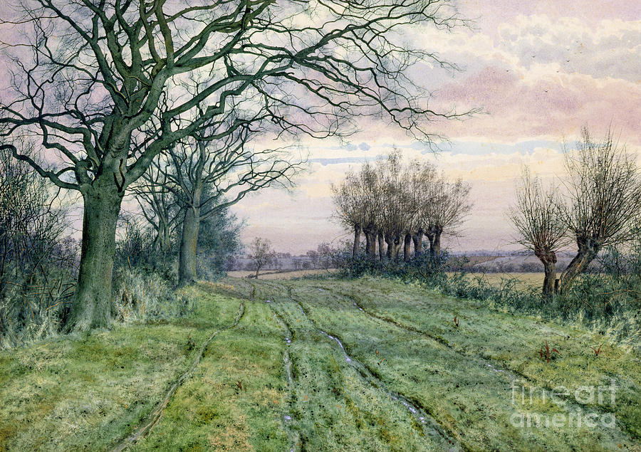 Fenland Painting - A Fenland Lane With Pollarded Willows by William Fraser Garden