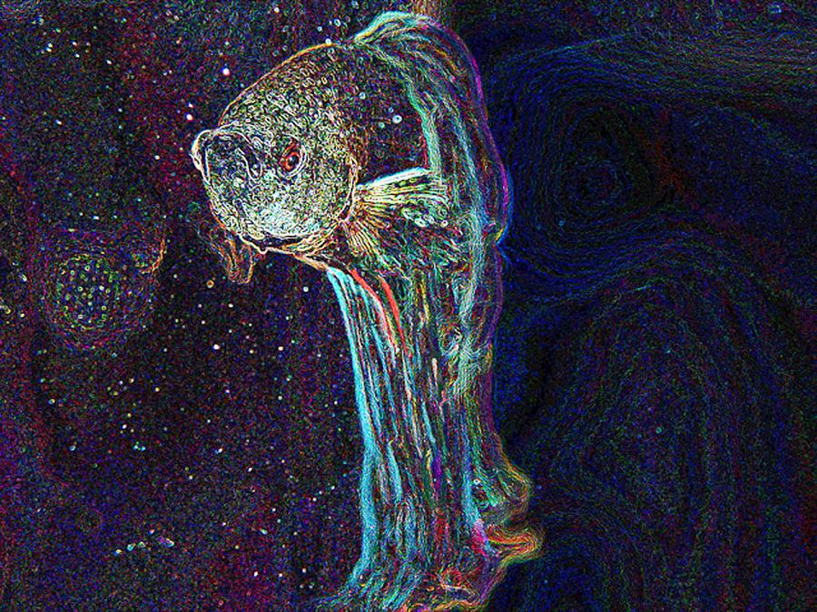 Fish Digital Art - A Fish Called Poe by Julie Niemela