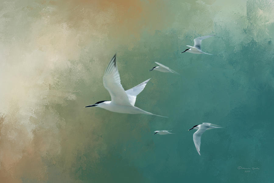 Egmont Key Photograph - A Flight Of Terns by Marvin Spates