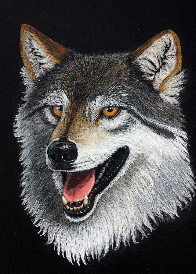 Animal Mixed Media - A Friendly Wolf by Lorraine Foster