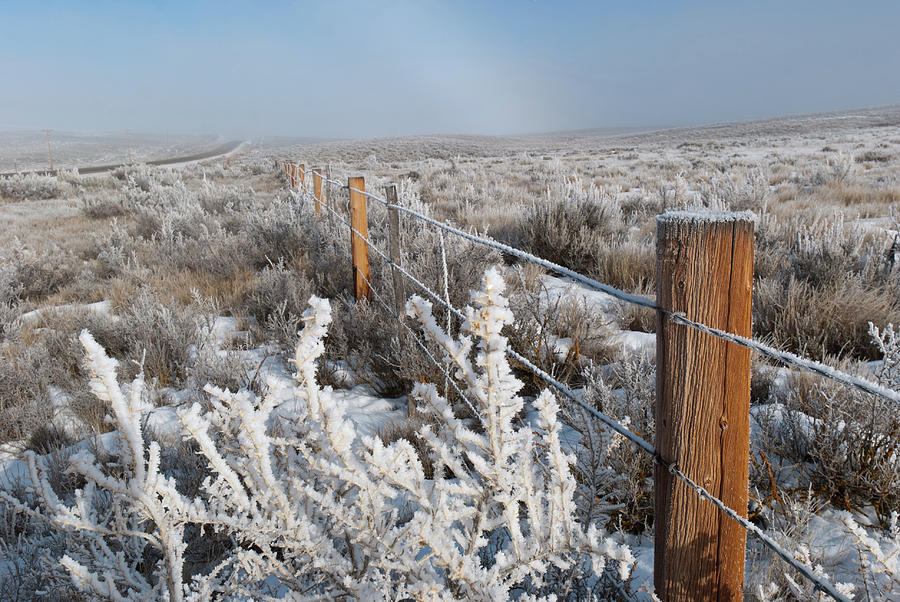 A Frosty And Foggy Morning On The Way To Steamboat Springs Photograph