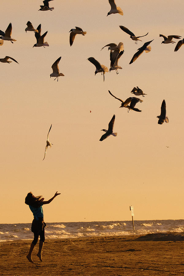 Beach Photograph - A Girl And Seagulls Before The Sunset - Texas by Ellie Teramoto