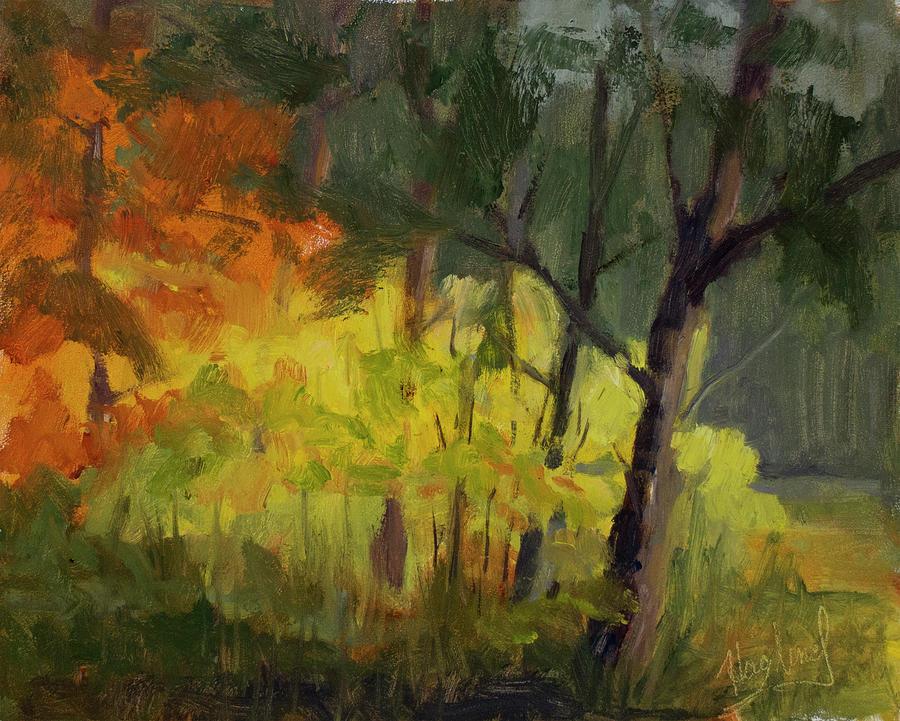 A Glimpse Of Fall  by Mark Haglund
