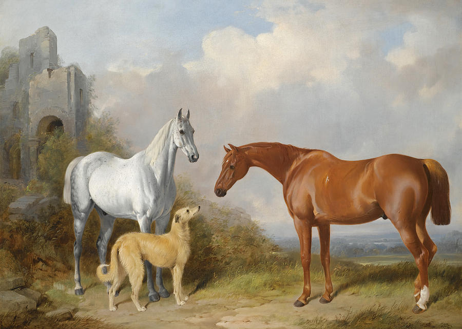 William Barraud Painting -  A Grey And A Chestnut Hunter With A Deerhound by William Barraud