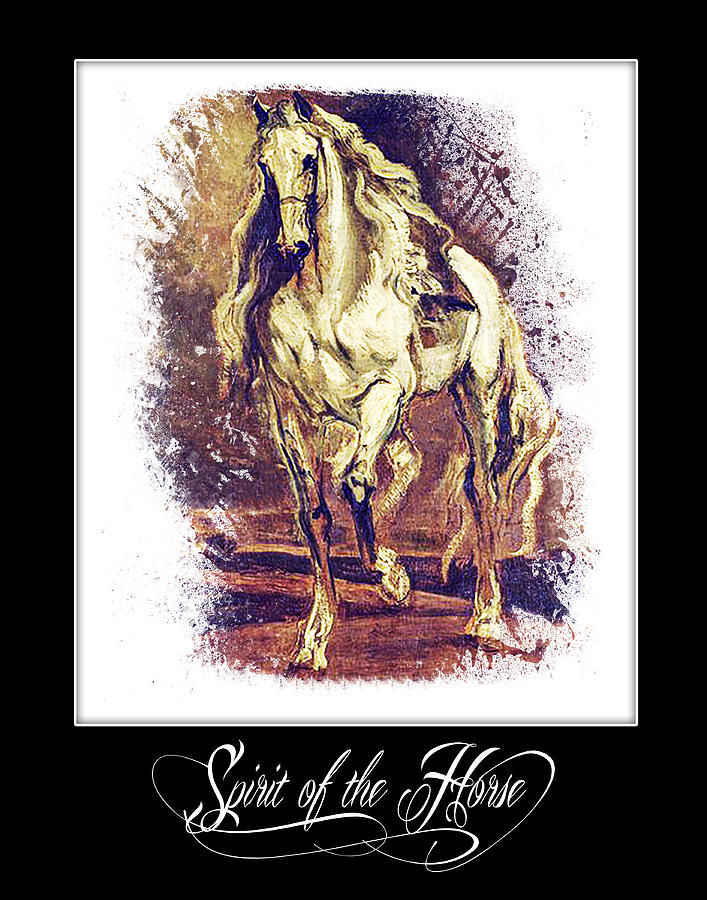 Antique Digital Art - A Grey Horse by Janice OConnor