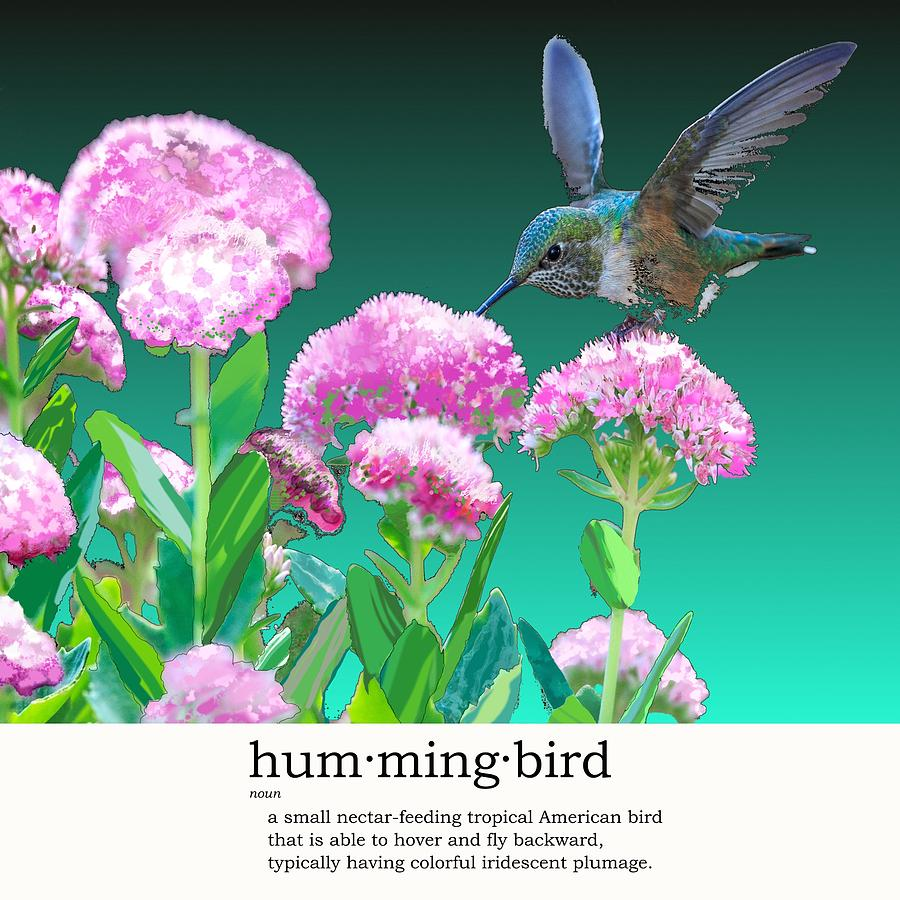 Hummingbird Digital Art - A Hummingbird Visits by Steve Kobb