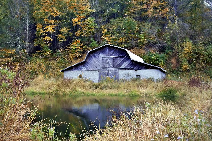 North Carolina Mountains Photograph - A Is For Autumn by Benanne Stiens