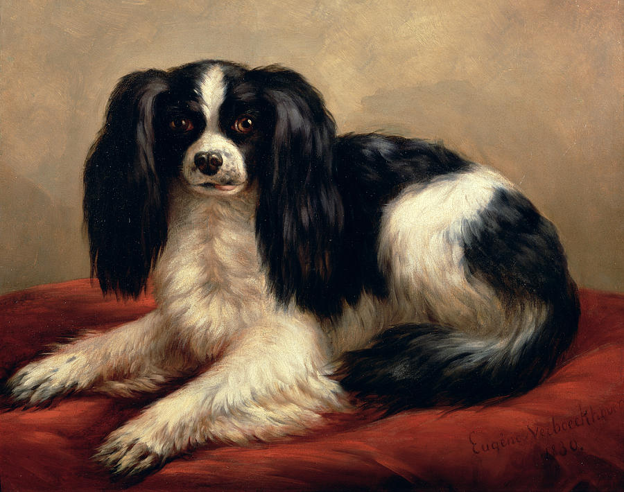 Eugene Joseph Verboeckhoven Painting - A King Charles Spaniel Seated On A Red Cushion by Eugene Joseph Verboeckhoven