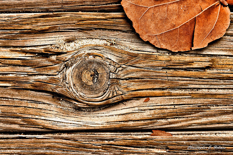 Wood Photograph - A Knot by Christopher Holmes
