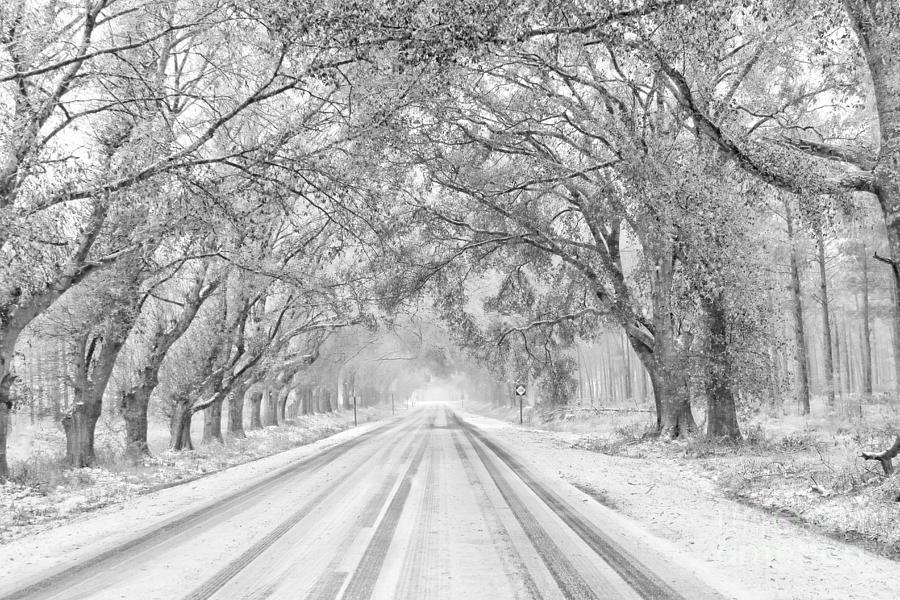 A Light Winter Kiss by Benanne Stiens