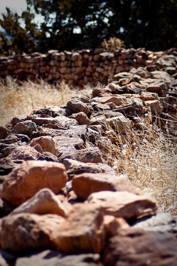 Landscape Photograph - A Living Past by Kandie  Kingery