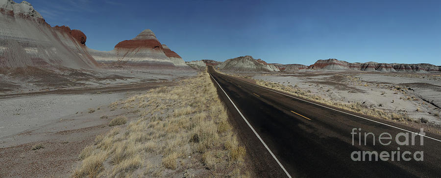 Petrified Forest Photograph - A Long Road by Rick Mann