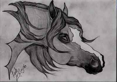 Arabian Drawing - A Look To The Past by Leah Jaarveth