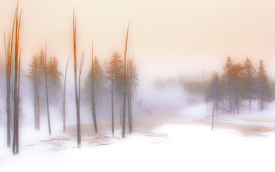 Mist Photograph - A Midwinters Dawn Dream by Paul Malen