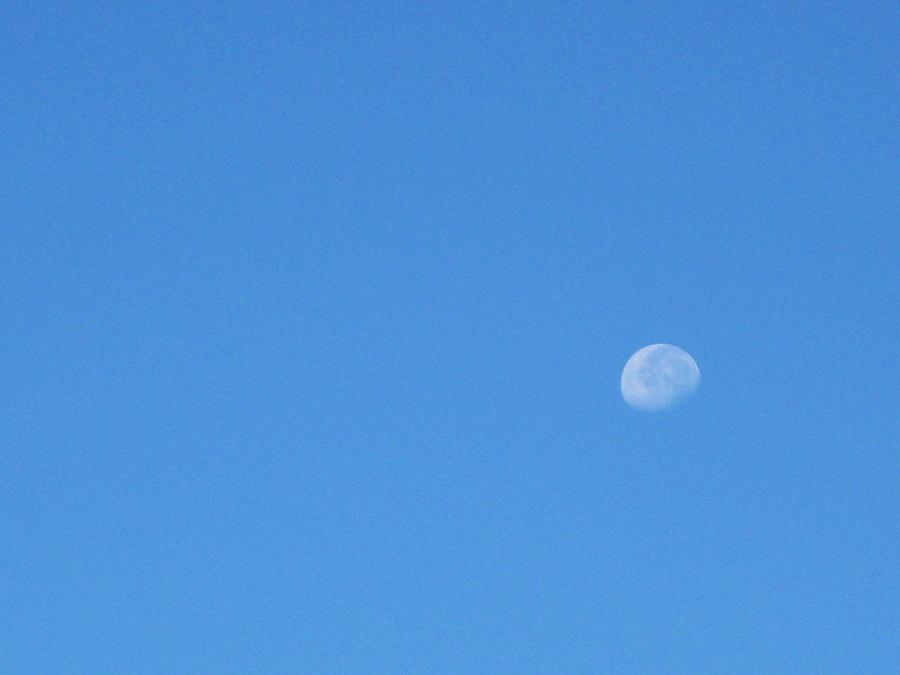 Moon Photograph - A Moony Day by Nancy Ippolito