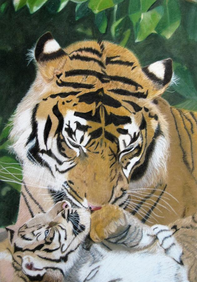 Tiger Drawing - A Mothers Love by Lori Hanks