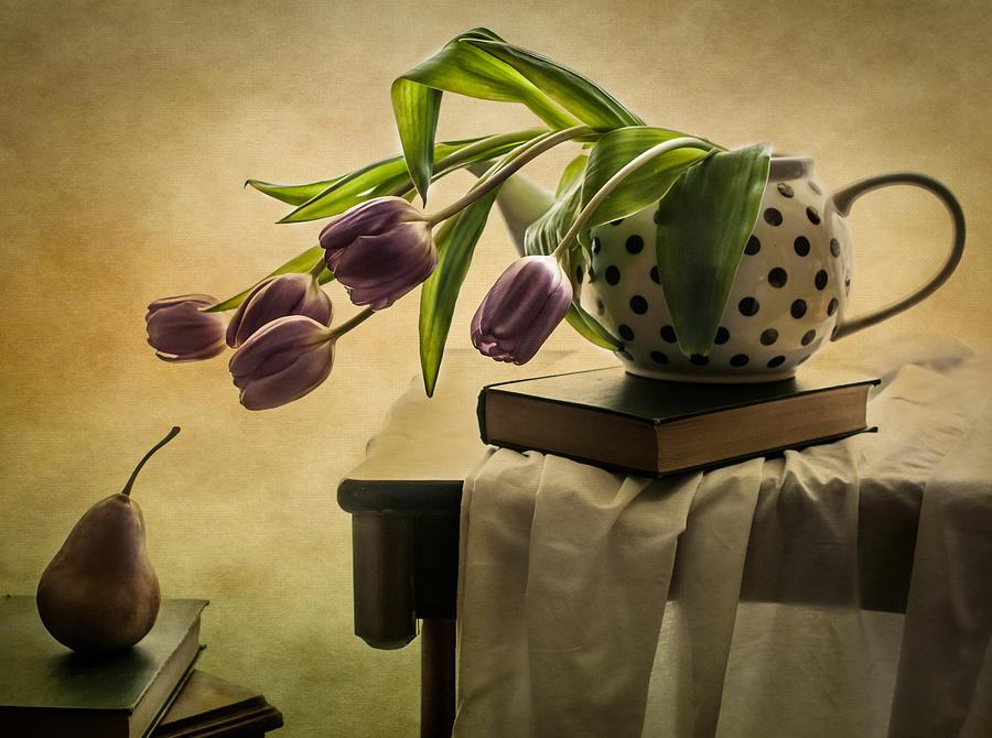 A Mutual Curiosity by Maggie Terlecki
