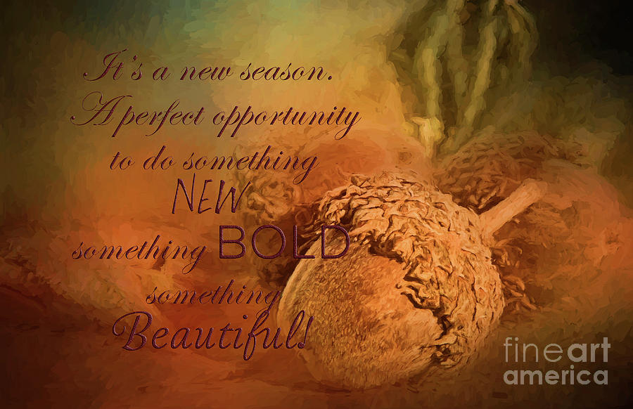 A New Season by Pam  Holdsworth