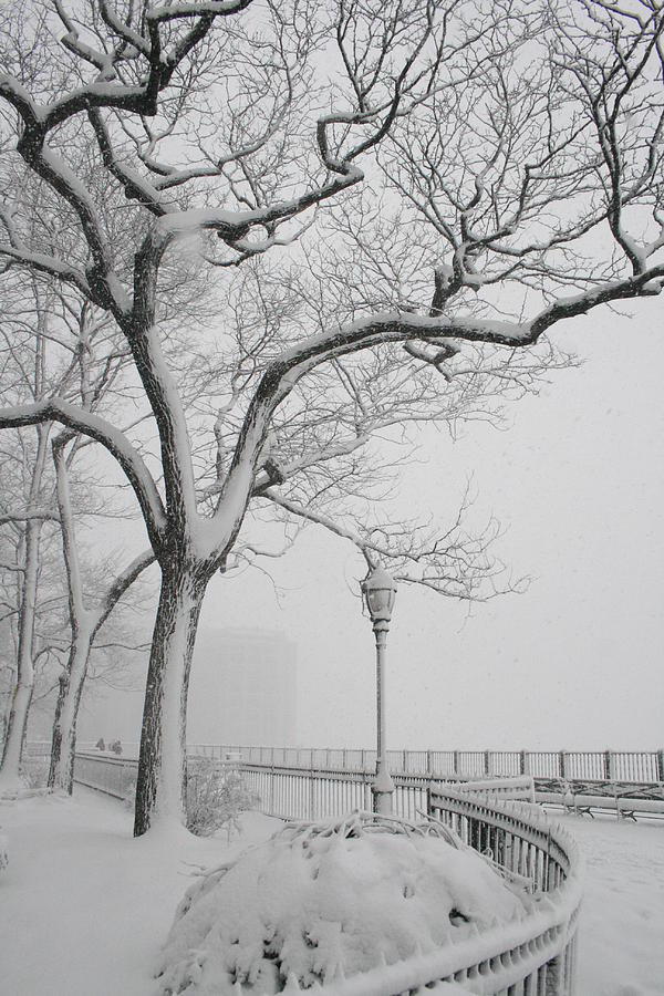 Brooklyn Heights Promenade Photograph - A Noreaster In Brooklyn by Christopher Kirby