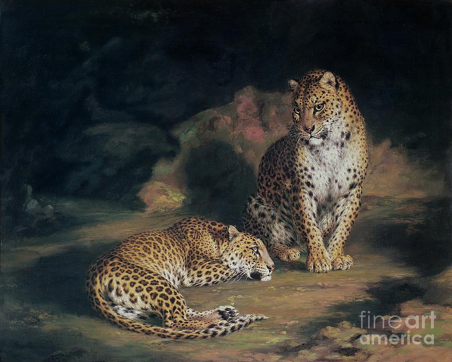 Pair Painting - A Pair Of Leopards by William Huggins