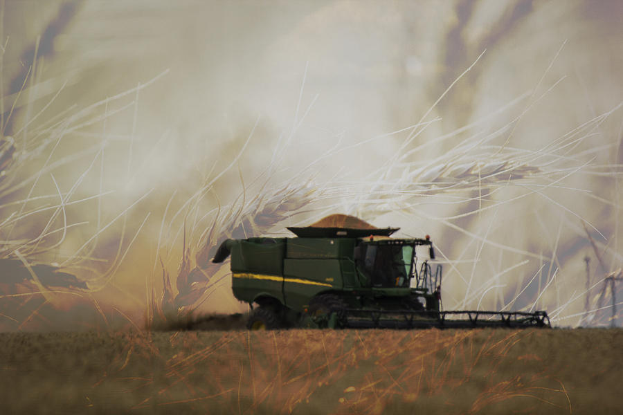 Windmill Photograph - A Panhandle Harvest by Nathan Bezner