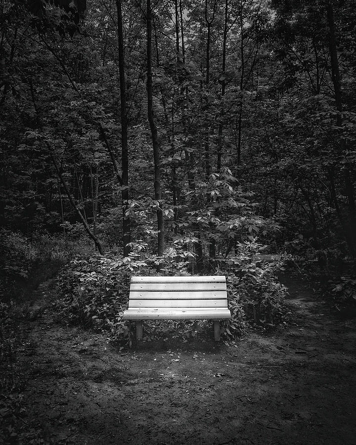 A Place To Sit Photograph