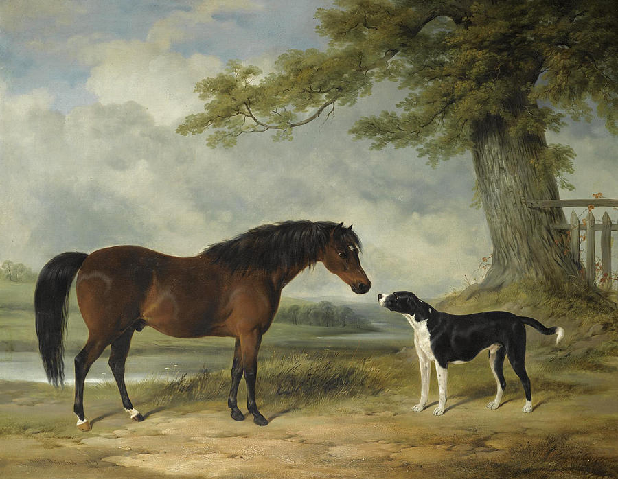 William Barraud Painting - A Pony With A Dog by William Barraud