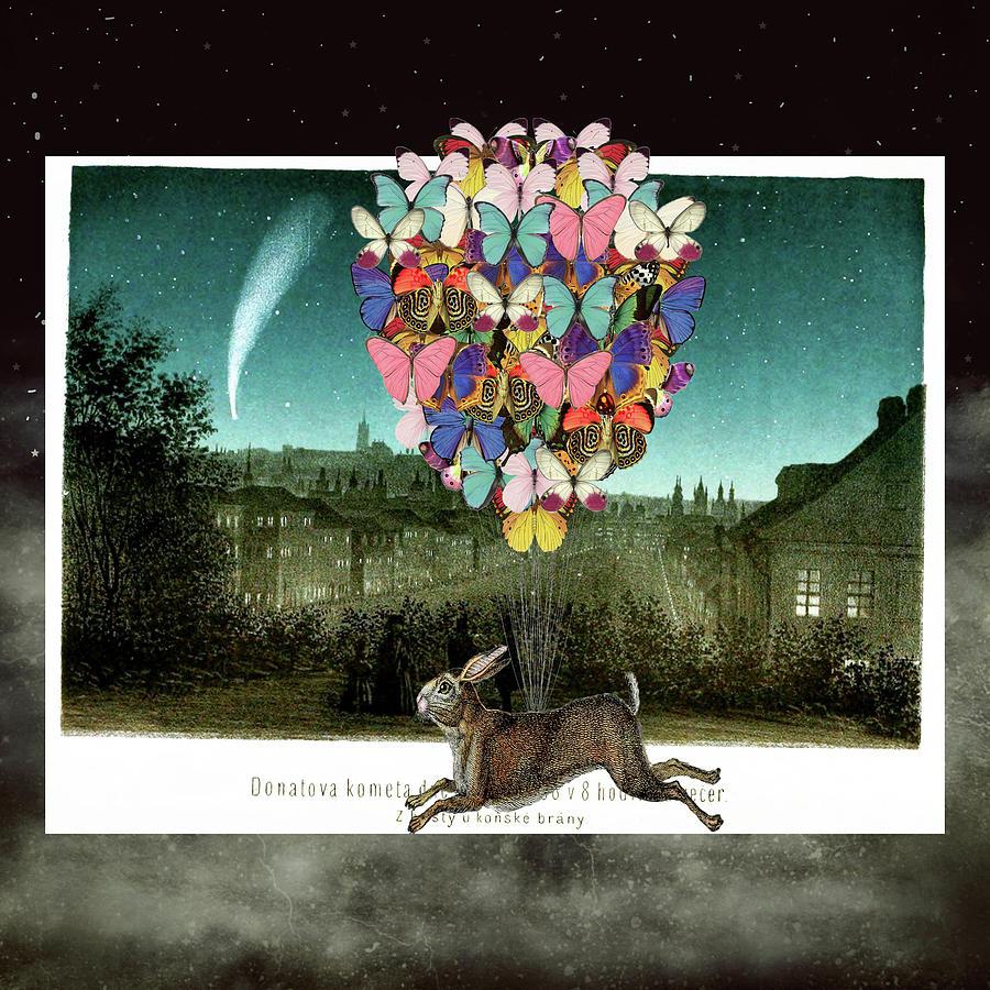 A Postcard To Hare Digital Art
