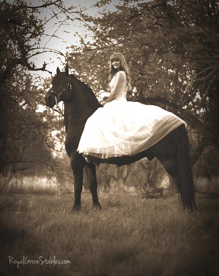 A Princess Dream by Carol Whitaker